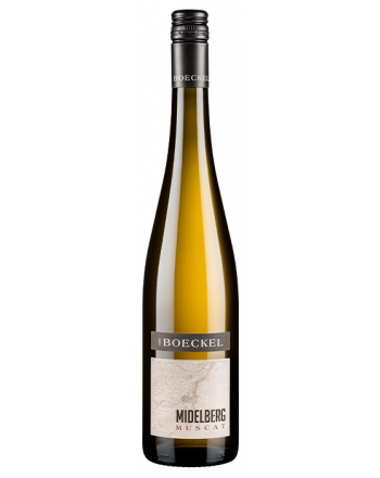 Muscat Midelberg 2018 - Emile Boeckel