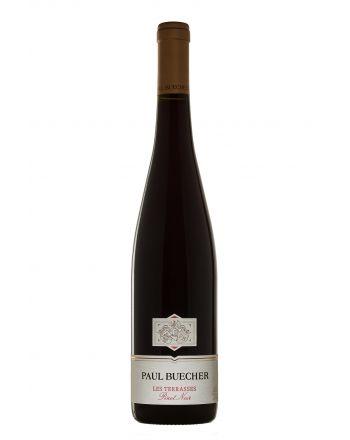 Pinot Noir Les Terrasses 2016 - Paul Buecher