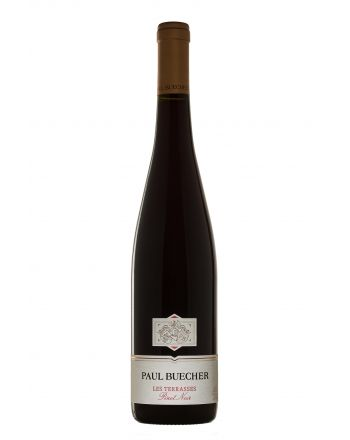 Pinot Noir Les Terrasses 2017 - Paul Buecher