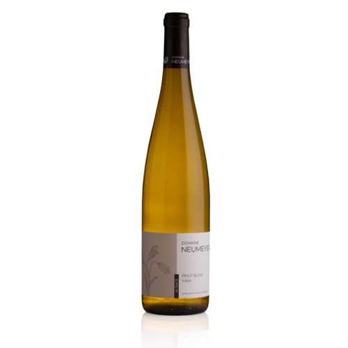 Pinot Blanc les Tulipes - Gérard Neumeyer