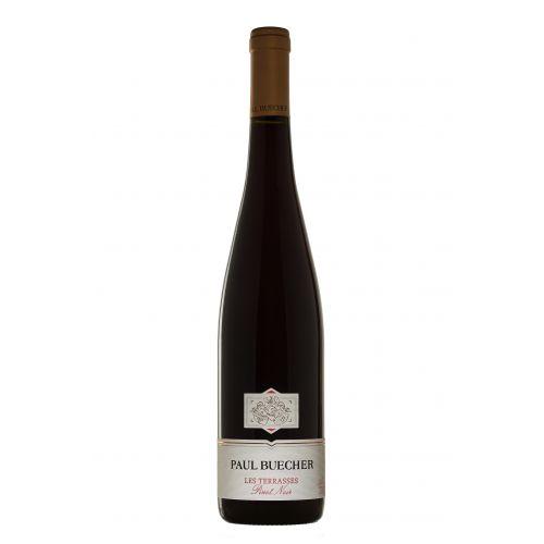 Pinot Noir Les Terrasses - Paul Buecher