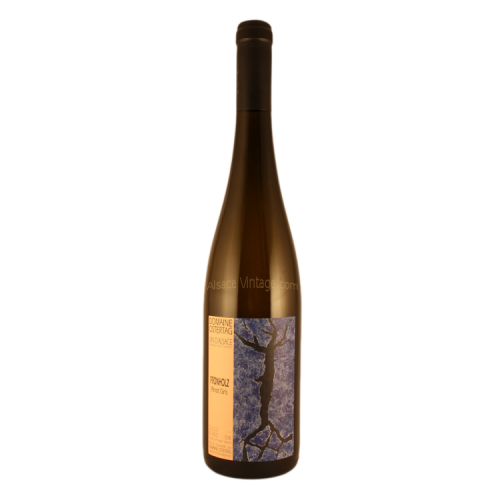 Pinot Gris Fronholz - Ostertag